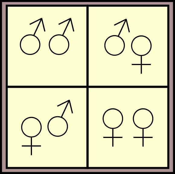 Los cuatro casos posibles, bien ordenados en una tabla